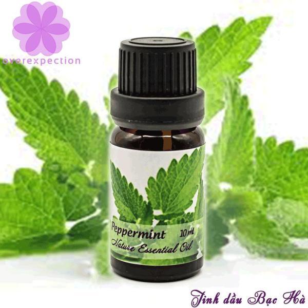 Tinh dầu bạc hà - Peppermint Essential Oil nhập khẩu