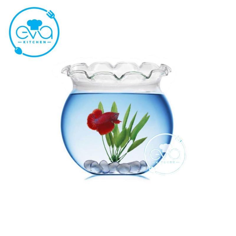 Hồ Cá Bể Cá Có Miệng Bèo Thuỷ Tinh Mini B4 7 x 10 Cm Tặng Kèm Sỏi Và Rong Trang Trí