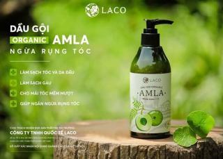 Dầu gội Organic Amla - Dầu gội amla 300ml thumbnail