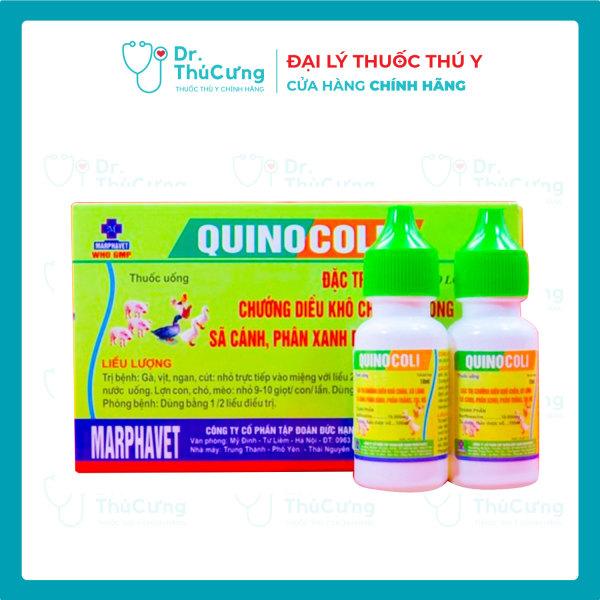 Quinocoli[hộp 02 lọ x10ml]-Chướng diều,không tiêu,sệ cánh,phân xanh phân trắng,toi,rù cho gà con.gà tơ hiệu quả cao-thuốc nuôi gà đá