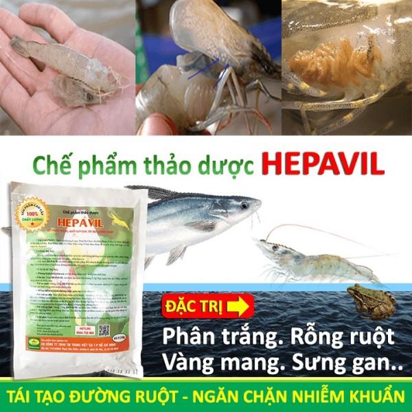 Chế Phẩm Thảo Dược Hepavil - Thuốc Đặc  Bệnh Rỗng Ruột, Phân Trắng, Vàng Mang, Sưng Gan Trên Tôm, Cá, Ếch - Trị Bệnh Cá