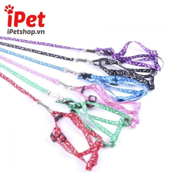 Dây Dắt Kèm Vòng Cổ Yếm Cho Chó Mèo Dưới 5kg - iPet Shop