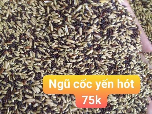 hạt trộn - hạt tổng hợp cho yến hót 1kg