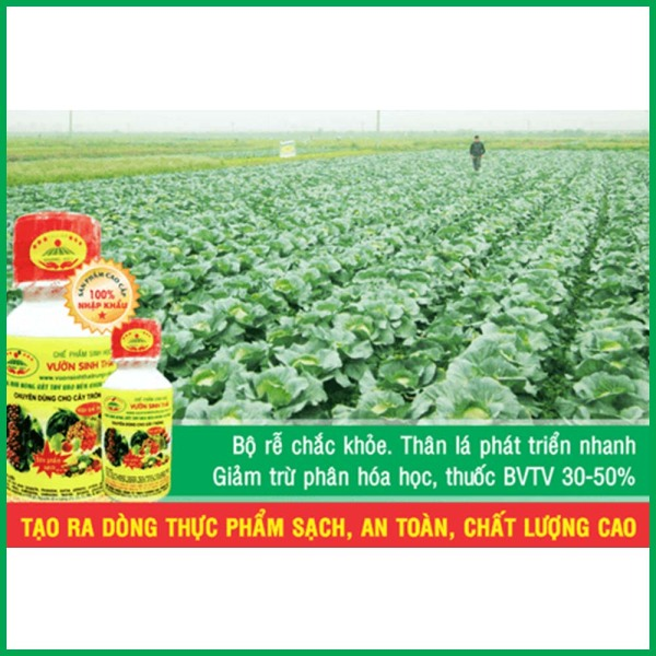 Chế phẩm sinh học Vườn Sinh Thái dùng cho cây trồng. Phân bón sinh học siêu NANO. Giúp rễ khỏe, cành chắc, đọt mạnh, ra hoa đậu quả nhiều. Chống rụng hoa rụng trái non. Ức chế sâu, bệnh gây hại