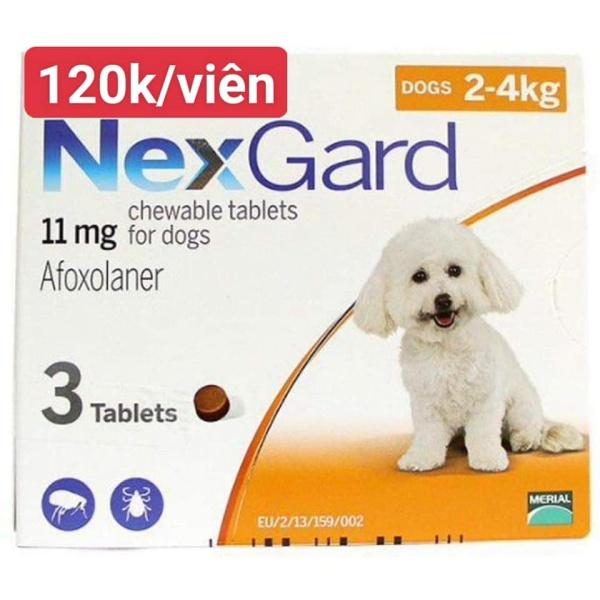 Nexgard phòng và trị ve và bò chét trên chó