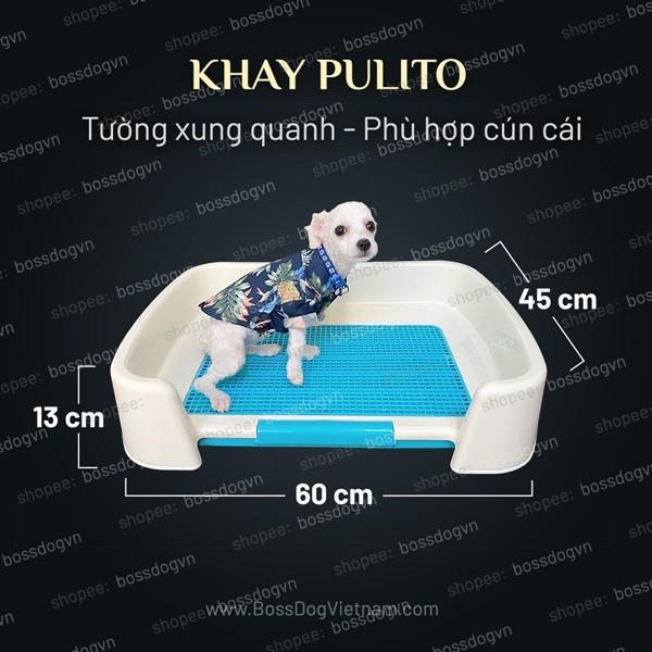 Khay vệ sinh chó tường bao quanh Pulito - Cho CÚN CÁI, mọi dòng poodle, pom, corgi v.v  BossDog