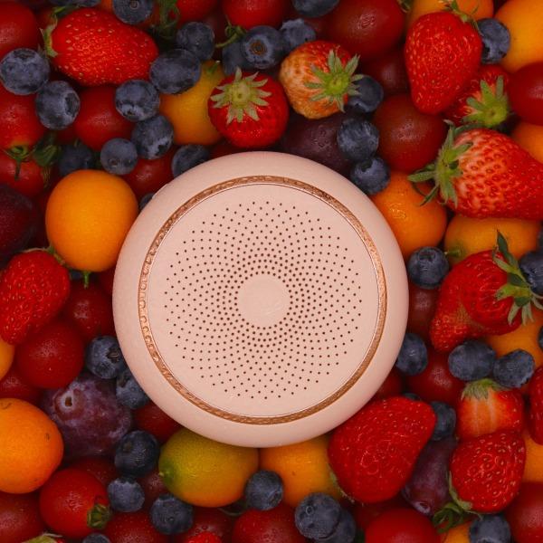 【CNUH MALL】 New Refrigerator Deodorizer, Air Purifier, Household Ozone Sterilization Deodorizer, Environmental Protection And Maintenance Free Portable Deodorizer