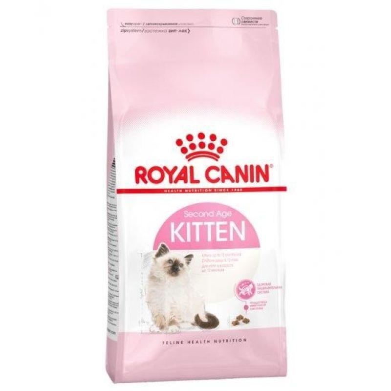 RCN Kitten 2kg