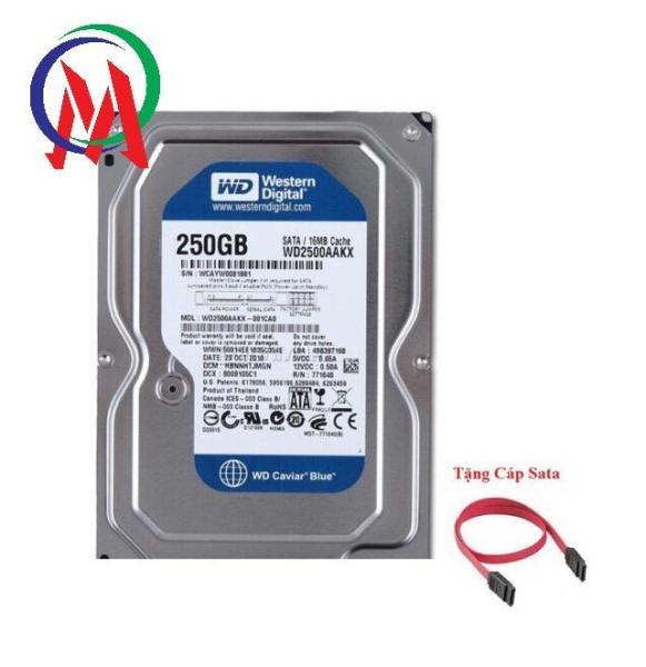 Bảng giá [Giá rẻ hủy diệt] Ổ CỨNG PC 250GB BH 24 THÁNG Tặng Cáp Sata Phong Vũ
