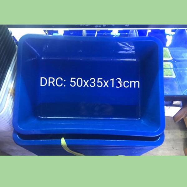 3 Khay Nhựa Xanh 50x35x13 Nuôi Cá Guppy, Betta