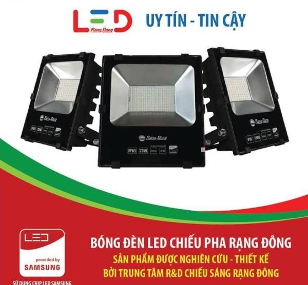 Đèn LED chiếu pha Rạng Đông DCP06L/10W