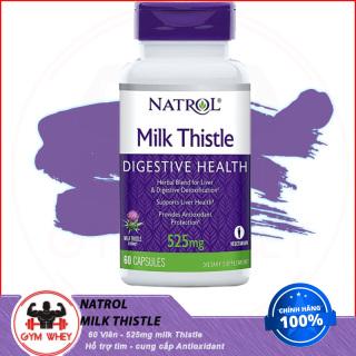 Viên Uống Giải Độc Gan Mát Gan Natrol Milk Thistle 60 Viên Từ Mỹ thumbnail