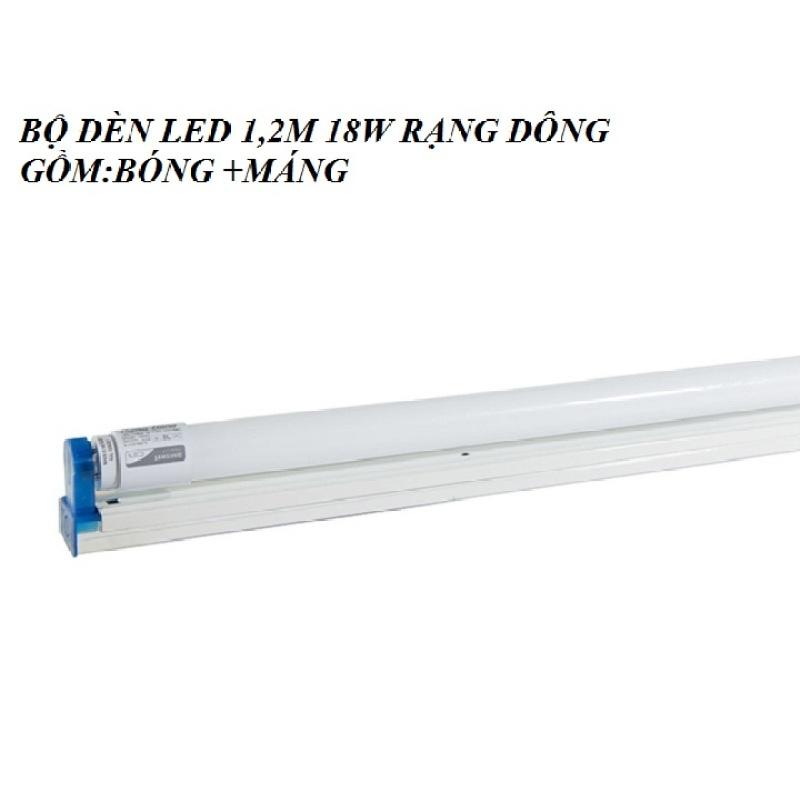 Bóng đèn LED Tuýp T8 1.2m 18W thủy tinh RẠNG ĐÔNG