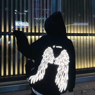 Áo hoodie vải nỉ nam nữ Wing02 thumbnail