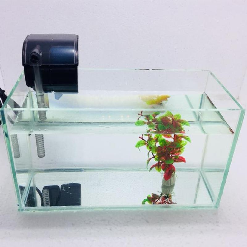 Bể cá mini để bàn 30x13x15cm + Lọc nước