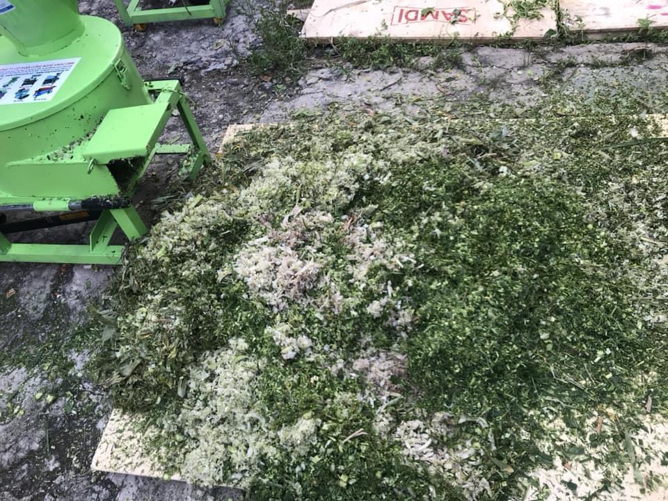 máy băm chuối băm cỏ đa năng okasu 2019 có cp chống giật