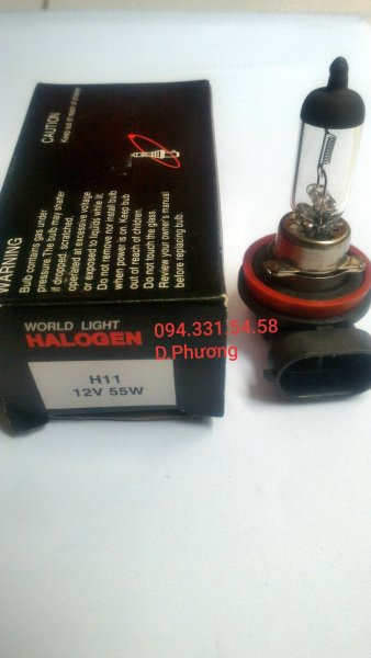 Bóng H11 12V 55W. Bóng đèn ô tô World Light. Chuyên các loại bóng đèn halogen giá sỉ