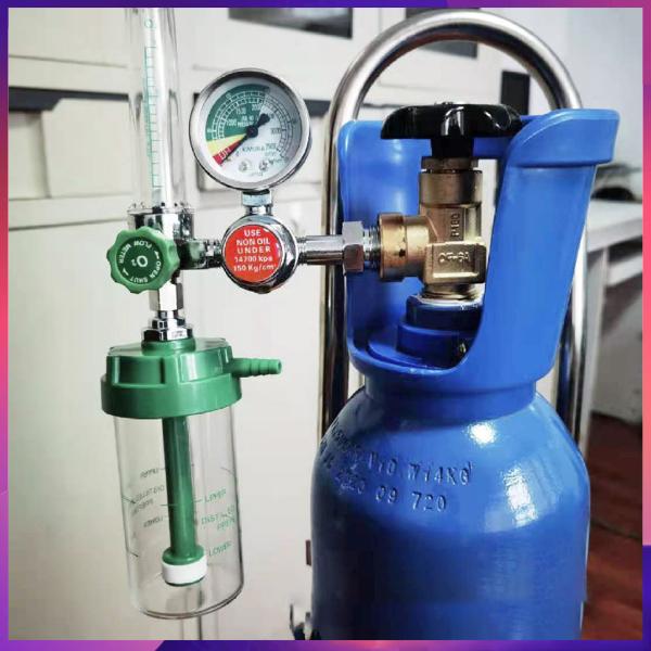 Regulator Flowmeter Gauge Valve Buoy Type 1-15L/min Oxygen Inhalation Apparatus Thiết bị hít oxy G5/8 Phao Máy Điều Chỉnh Áp Suất Oxy Loại CGA540 Đồng Hồ Đo Giảm Áp O2 Đồng Hồ Đo Lưu Lượng random color style cao cấp