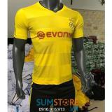 Ôn Tập Ao Bong Đa Borussia Dortmund Đồ Đa Banh 2018 Bao In Oem Trong Hồ Chí Minh