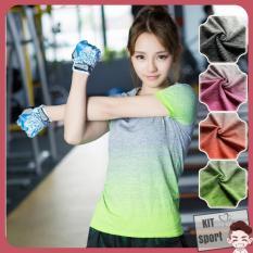 Mã Khuyến Mại Ao Thun Nữ Thể Thao Roht Hang Nhập Khẩu Đồ Tập Quần Ao Gym Thể Dục Thể Hinh Yoga Kit Sport Kit Sport Đồ Tập Chính Hãng