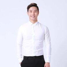 Ôn Tập Ao Sơ Mi Cổ Bẻ Thời Trang Prazenta Std12 Trắng Trong Hồ Chí Minh