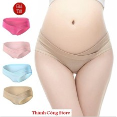 Bộ 4 Quần Lót Cotton Cho Bà Bầu (Thành Công Shop.)