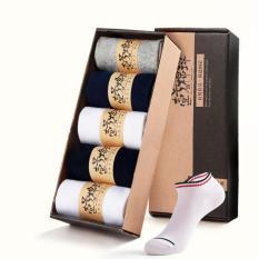 Bộ 5 đôi vớ nam cotton 2 sọc cổ thấp (5 màu) - 019A