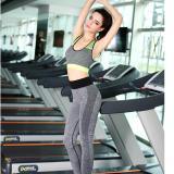 Giá Bán Bộ Quần Ao Tập Gym Thời Trang Cao Cấp Mau Xanh Oem Mới
