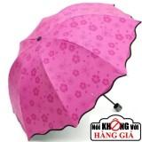 chiếc ô Nhật Bản biết… 'nở hoa' mỗi khi bị ướt