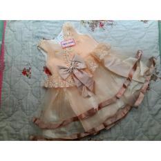 Hình ảnh Đầm công chúa sát nách cao cấp , dạ hội , dự tiệc , bé gái voan sang trọng ,2 lớp màu VÀNG MƠ,THẮT NO SAU LƯNG .(10-30KG) D&T, KM