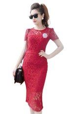 Ôn Tập Đầm Ren Body Tay Ngắn Sieu Thị Đồng Gia 7269 Đỏ Đo