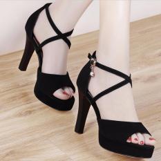 Chiết Khấu Giay Sandal Ca Tinh