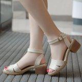 Cửa Hàng Bán Giay Sandal Nữ Cao Got Thời Trang Phong Cach Sg0386