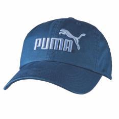 Mua Mũ Lưỡi Trai Puma Chinh Hang Xanh Blue Trực Tuyến