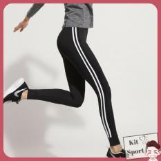 Ôn Tập Quần Dai Legging Thể Thao Nữ Rxeer Hang Nhập Khẩu Đồ Tập Quần Ao Gym Thể Dục Thể Hinh Yoga Kit Sport