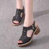 Mua Sd02D Giay Sandal Nữ Ca Tinh Phong Cach Han Quốc Oem Nguyên