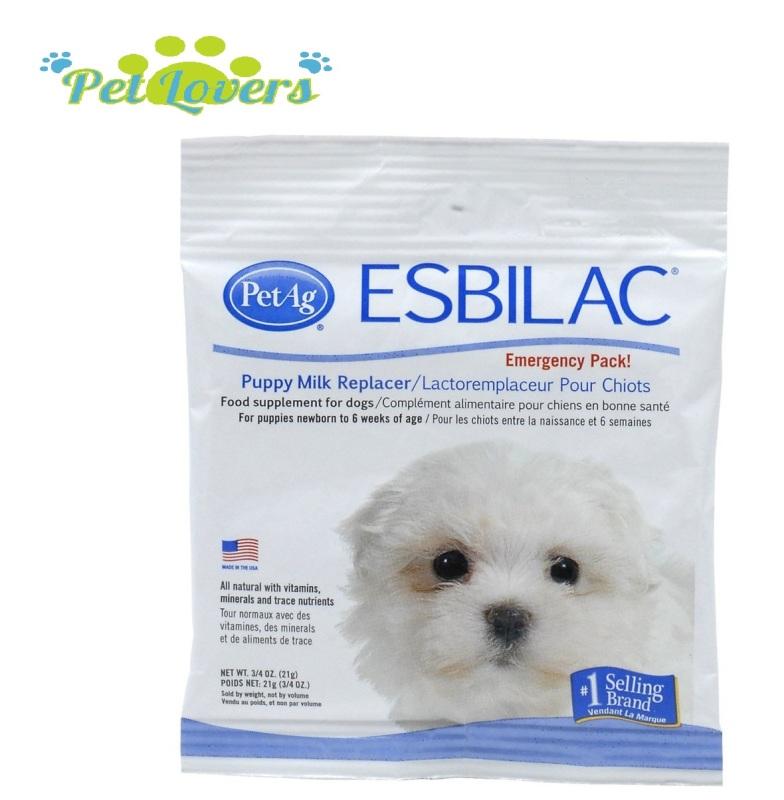 Esbilac - Sữa bột cho chó con - 21g