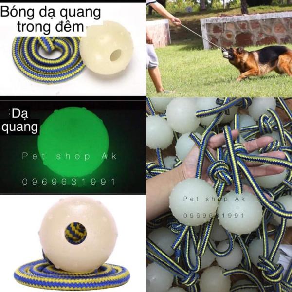 Bóng cao su dạ quang đồ chơi cho chó