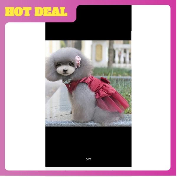 Đầm cosplay cho chó cưng-nhiều màu sắc và kích cỡ cho thú cưng