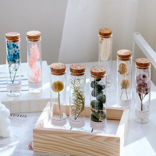Mua Lọ Hoa Khô Đựng Trong Ống Nghiệm Thủy Tinh Nút Bần 3x12cm 60ml Decor Trang Trí Nhà Cửa, Đạo Cụ Chụp Ảnh Siêu Đẹp