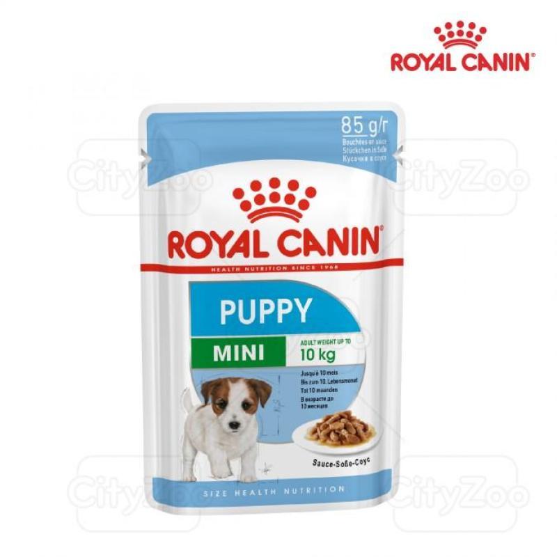 ROYAL CANIN MINI PUPPY WET - THỨC ĂN ƯỚT CHO CHÓ NHỎ CON TỪ 2 - 10 THÁNG TUỔI 12 X 85G