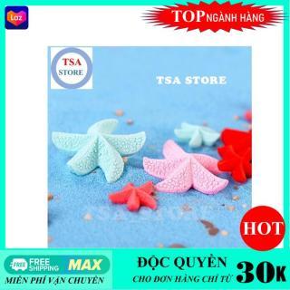 Phụ kiện tiểu cảnh Sao biển mini (Combo 2 chiếc) trang trí tiểu cảnh chậu cây mini terrarium hồ cá bonsai hòn non bộ sen đá xương rồng thumbnail