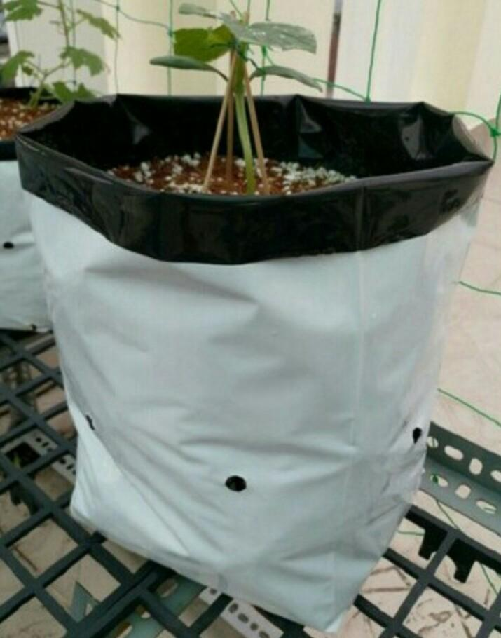 1 kg túi trồng cây 2 da 20x32 màu trắng đen