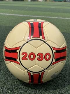 Quả bóng đá sân Futsal và cỏ nhân tạo Geru Star 2030 - da PU Khâu Tay - Số 4 - Tặng kim bơm và lưới đựng bóng thumbnail
