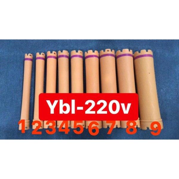 Combo 10 Xương Uốn Nóng Loại Dài YBL 220V