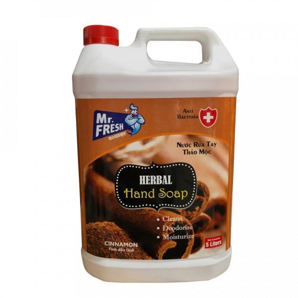 Can nước rửa tay tiệt trùng Premium Hand Soap Mr Fresh Hàn Quốc 5L (Nhiều hương tùy chọn) BH458 nhập khẩu