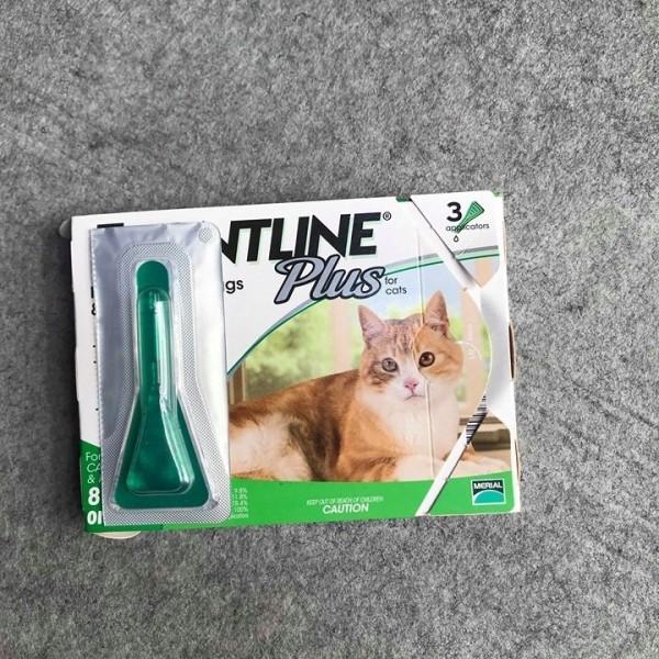 Nhỏ Gáy  Ve Rận Chó Mèo