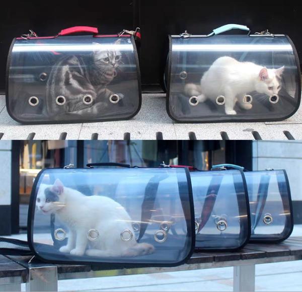 Túi xách chó mèo, túi trong suốt vận chuyển thú cưng đi xa