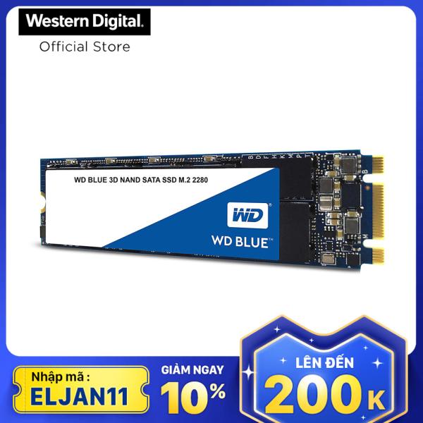 Bảng giá Ổ cứng SSD WD Blue 3D-NAND M.2 2280 SATA III 250GB WDS250G2B0B Phong Vũ