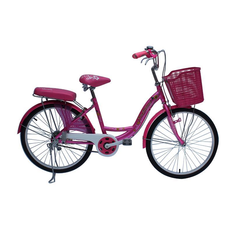 Mua Xe đạp thông dụng SMNBike WR 24-01 - 24 inch ( 11+ tuổi )